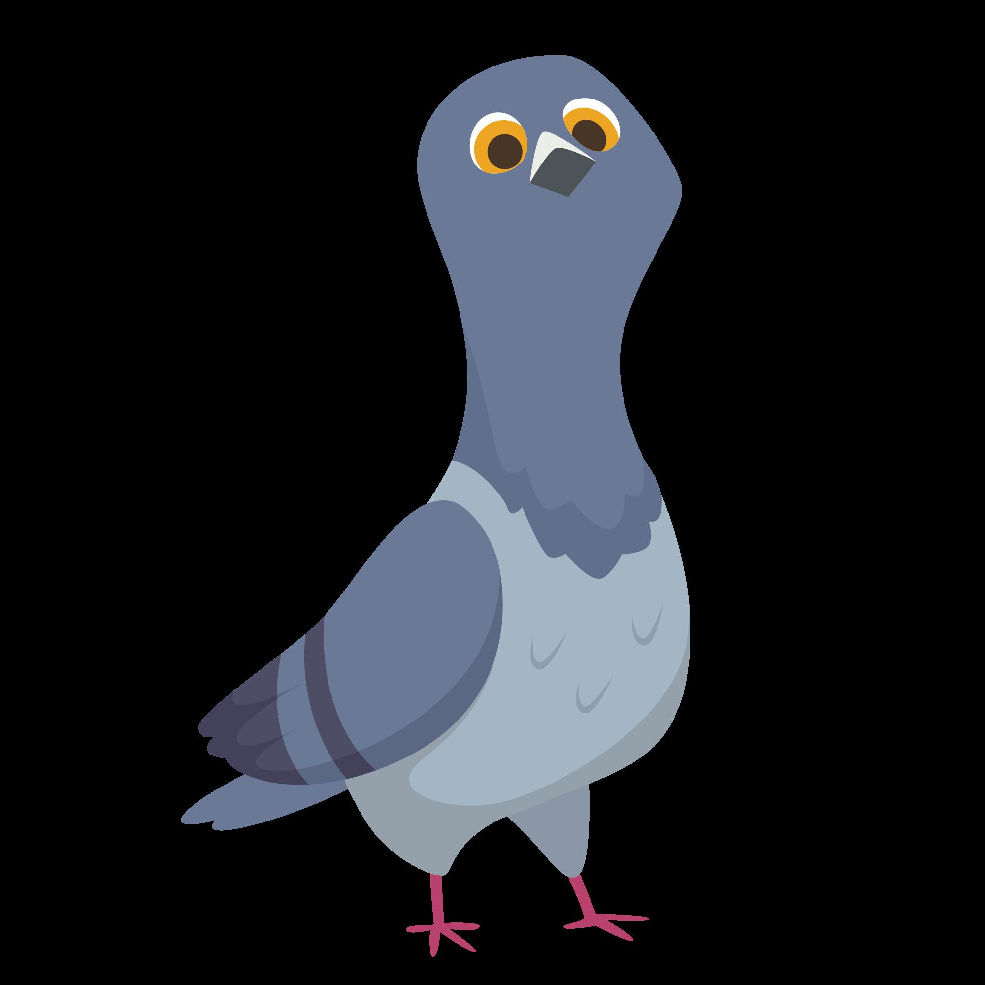 Blöd guckende Taube illustiriert